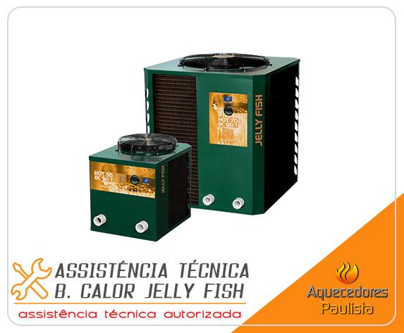Assistência Técnica Bomba de Calor Jelly Fish